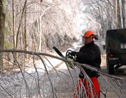 Chainsaw Protective Clothing | PPE Requirements | Protec Direct