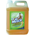 5L Mr Muscle Multi-Surface Cleaner